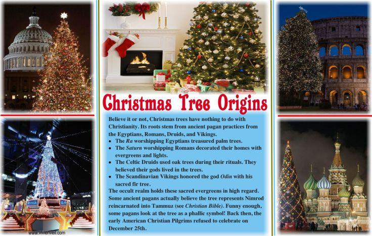 christmas-tree-origins