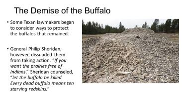 The+Demise+of+the+Buffalo